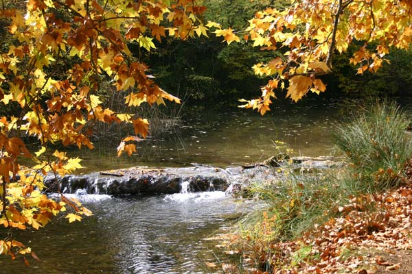 riviere-automne-provence
